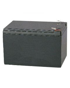 S-12120: AGM VRLA Batteries