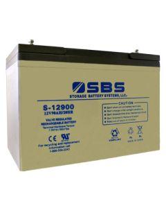 S-12900: AGM VRLA Batteries
